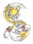 Tails the Fox by AmaterasuOmikami
