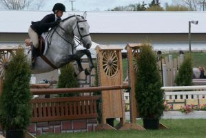 Equitation - 1 by Silver-Stock-Images