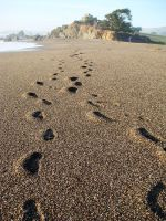 Our Footprints by DistantVisions