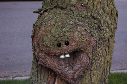 Tree Face by TheMindForest