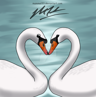 Swans Mate For Life by Mammal33