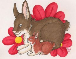 Somebunny loves you by selunca