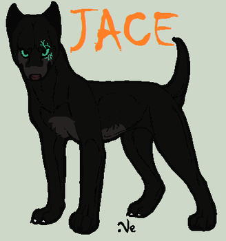 Jace-Profile by TheSheeranKennel