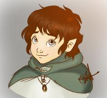 Frodo Baggins by antoinette721