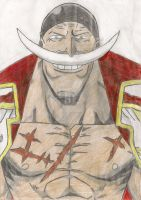 Whitebeard by IDimopoulos