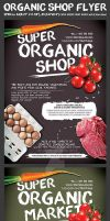 Organic Shop Promotion Flyer Template by Hotpindesigns