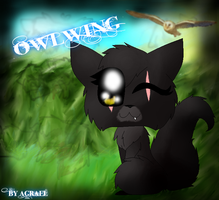 Owlwing by AgraelLPS