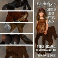 STOCK - Exclusive Centaur Body by NorellaAngelique