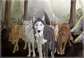 Wolf Pack feat. cameos by WTFfrenzy
