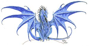 Blue Dragon by Camspar