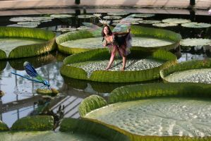 Playing Amid the Lilly Pads by Louloucatmom