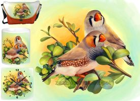 Zebra finches by emmil