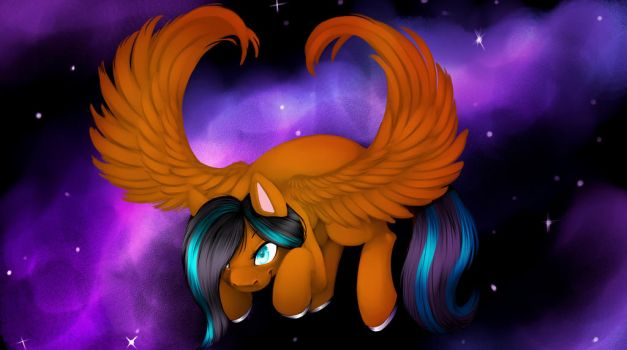 High In The Night Sky by Kittylover17