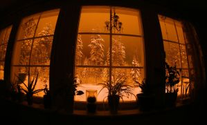 backyard on a winter night by KariLiimatainen