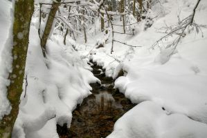 Little Snowy Creek by Burtn