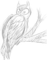 Sketch of an Owl by CrazyLittleOwl