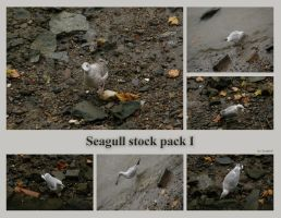 London 13 Seagull Wink by Gwathiell