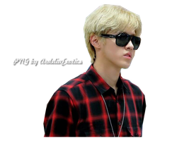 Kris EXO [PNG] by ArdeliaExotics