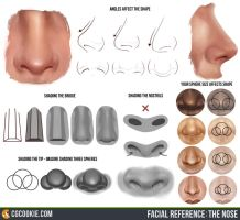 Facial Reference: The Nose by CGCookie