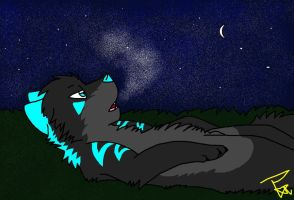 Rire under the stars by CinderIzAwesome