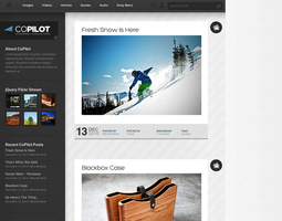CoPilot WordPress and Tumblog by lickmystyle