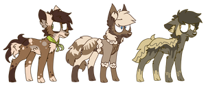 adopts closed by cyaf
