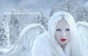 .:Winter Angel:. by Morteque