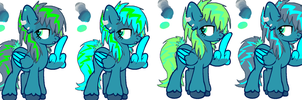 Storms Designs by Galaxy-Traxs
