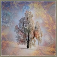 Ab09 Lonesome Tree by Xantipa2-2D3DPhotoM