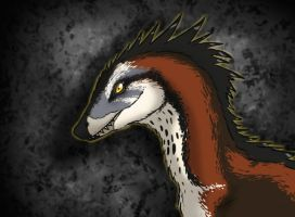 Ornate Raptor by Spikeheila