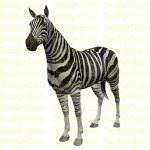 Zebra Stock 2 by Shoofly-Stock