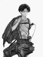 Levi Ackerman by Billy-Cash