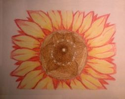 Red Sunflower by xHaimarux