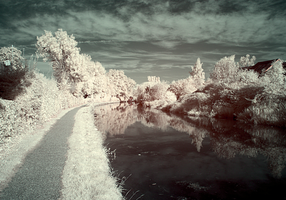Canal view in IR by bmh1