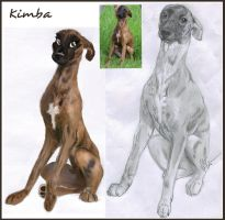 Whippet Kimba by GoldieRetriever