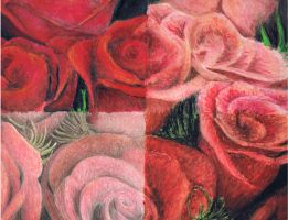 roses by smile4thelie