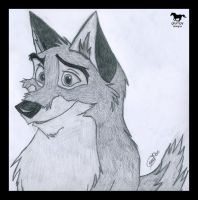 Balto by glumpy