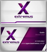 logotype and card business by guidodesignvetor