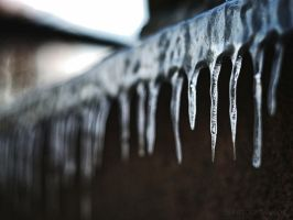 Icicles by bwanot