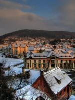 Sighisoara by dienuca