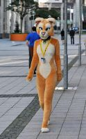 013 Sofia Lioness at EF16 by basil-lion