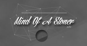 Mind Of A Stoner by funnyfoxnl17