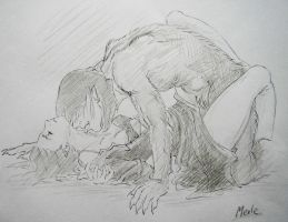 Werewolf passion by melliannen