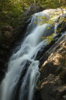 Campbell's Falls - IV by froggynaan