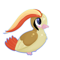 Pidgeot - 018 by Kiytt
