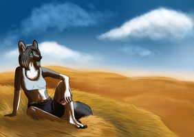 Quiet field by Lusa-Lusa