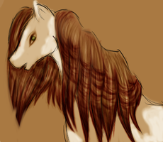 Feather Barred Mane by Dreamsickdev