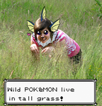 DONT GO INTO THE TALL GRASS by Exploding-Zombies