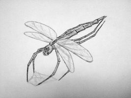 Spiderfly by kahil