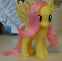 Custom Fluttershy .FRONT. by Aquillic-Tiger